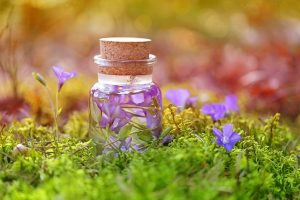 best herbal supplements for anxiety